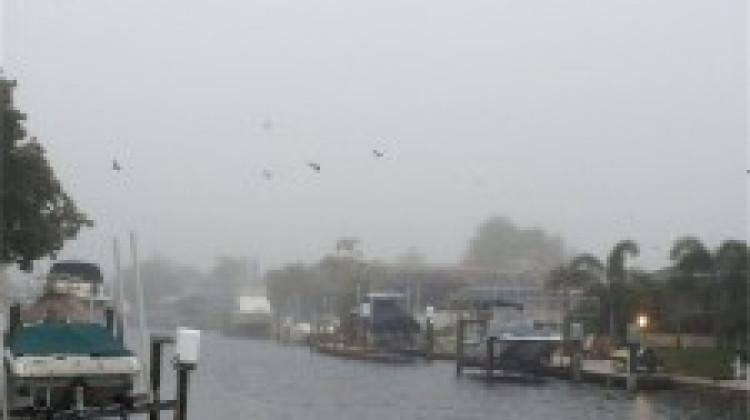 Creepy, Cozy Fog…