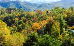 Leaf Peeping, Hiking, Eating, Hot-tubbing, and more!
