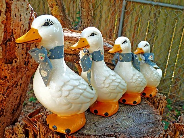 ducks-500905_640