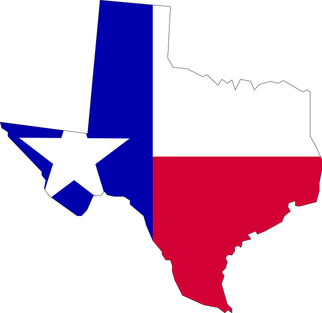 A Texas Tea and Book Party By Celia Yeary