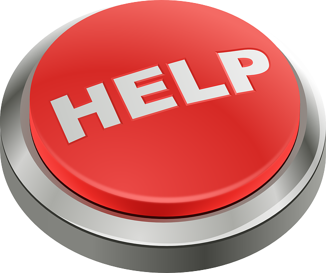 """HELP!"" Emergency Grants for Writers, Artists, and Other Creative Folks By Robyn McGee"