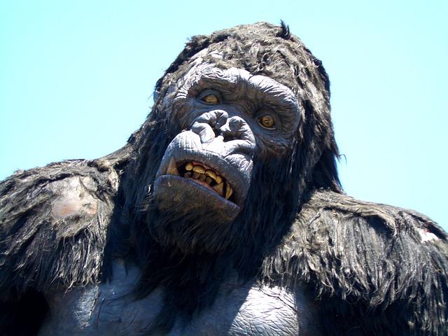 King, Kong
