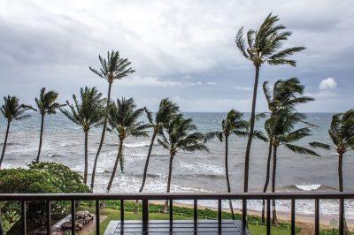 Tropical, Storm