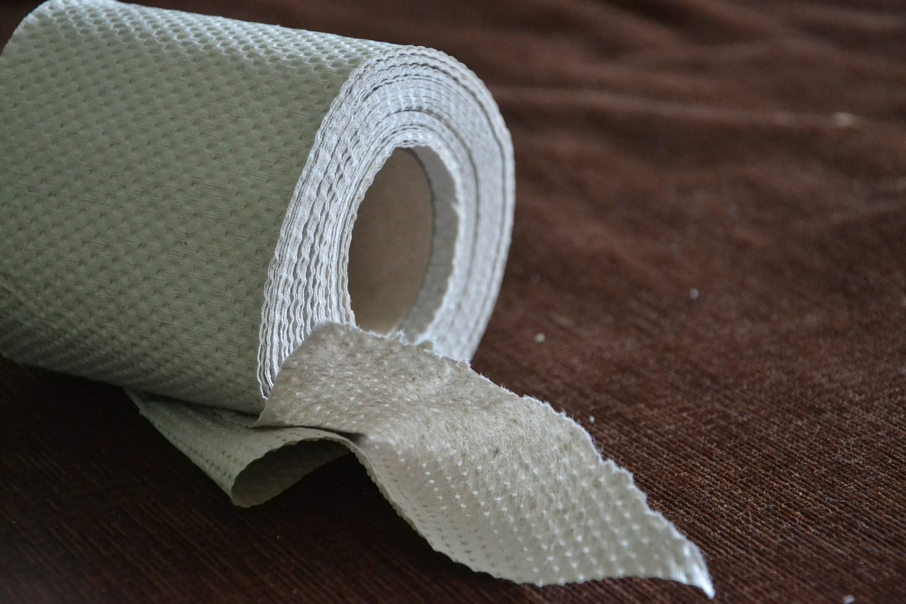 IS THERE TOILET TISSUE ON YOUR VIRTUAL SHOE? 10 Embarrassing Things Readers Won't Tell You About Your Blog! By Jennifer Brown Banks