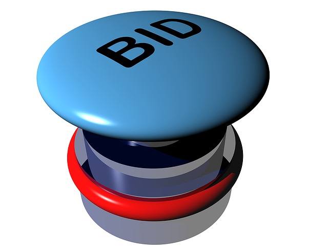 Should You Bid For Ad Space on Amazon? by Richard Hoy