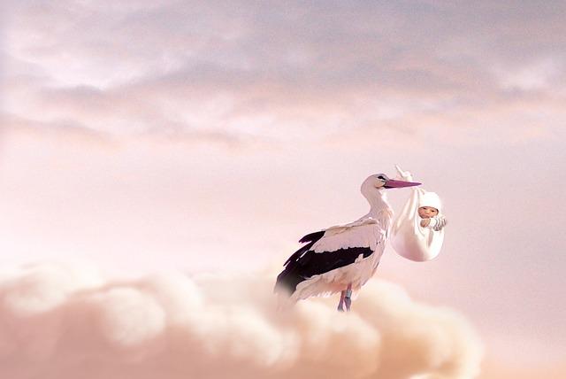 Baby, Stork