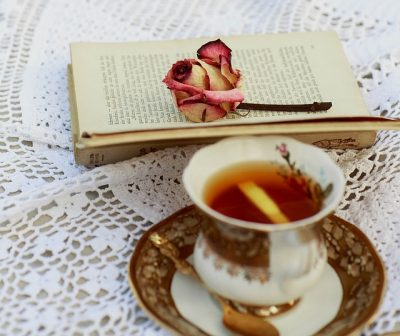 RELUCTANTLY ROMANCING THE WORDS: How I Finally Fell in Love with My Novel – by Jayne Thurber-Smith