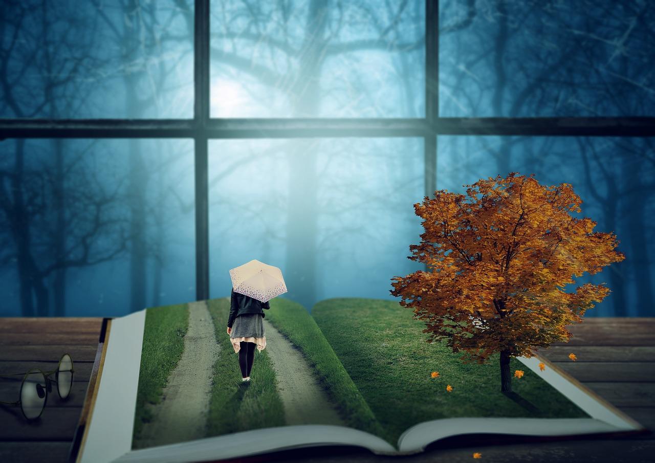 Magic, Book
