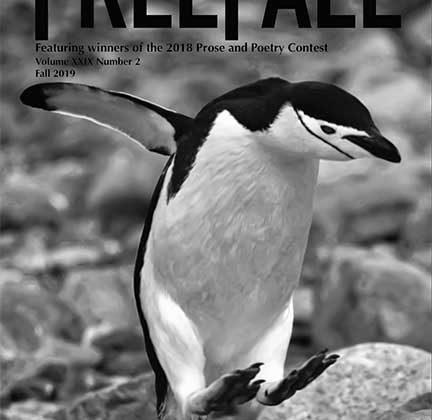 Freefall Magazine