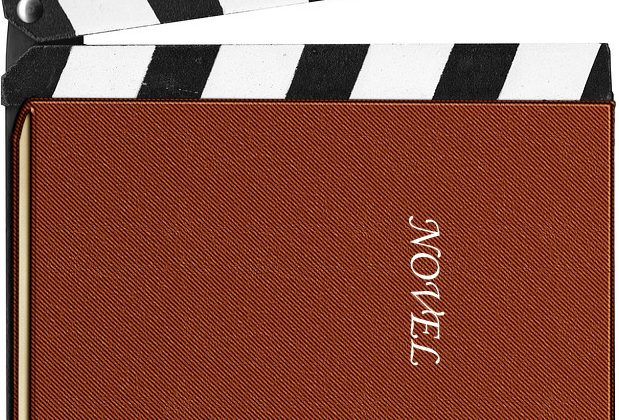 Screenplay to Novel – One Way to Get Around Hollywood! – by Skip Press