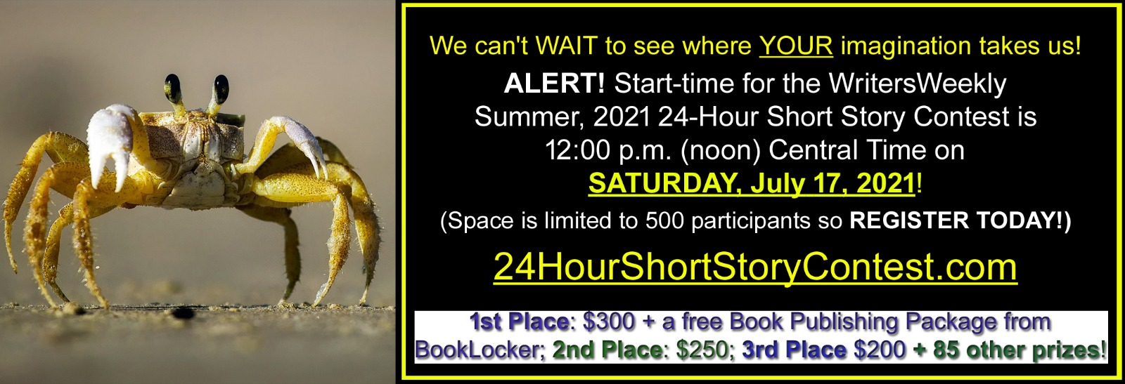 Fall 2020 24 Hour Short Story Contest